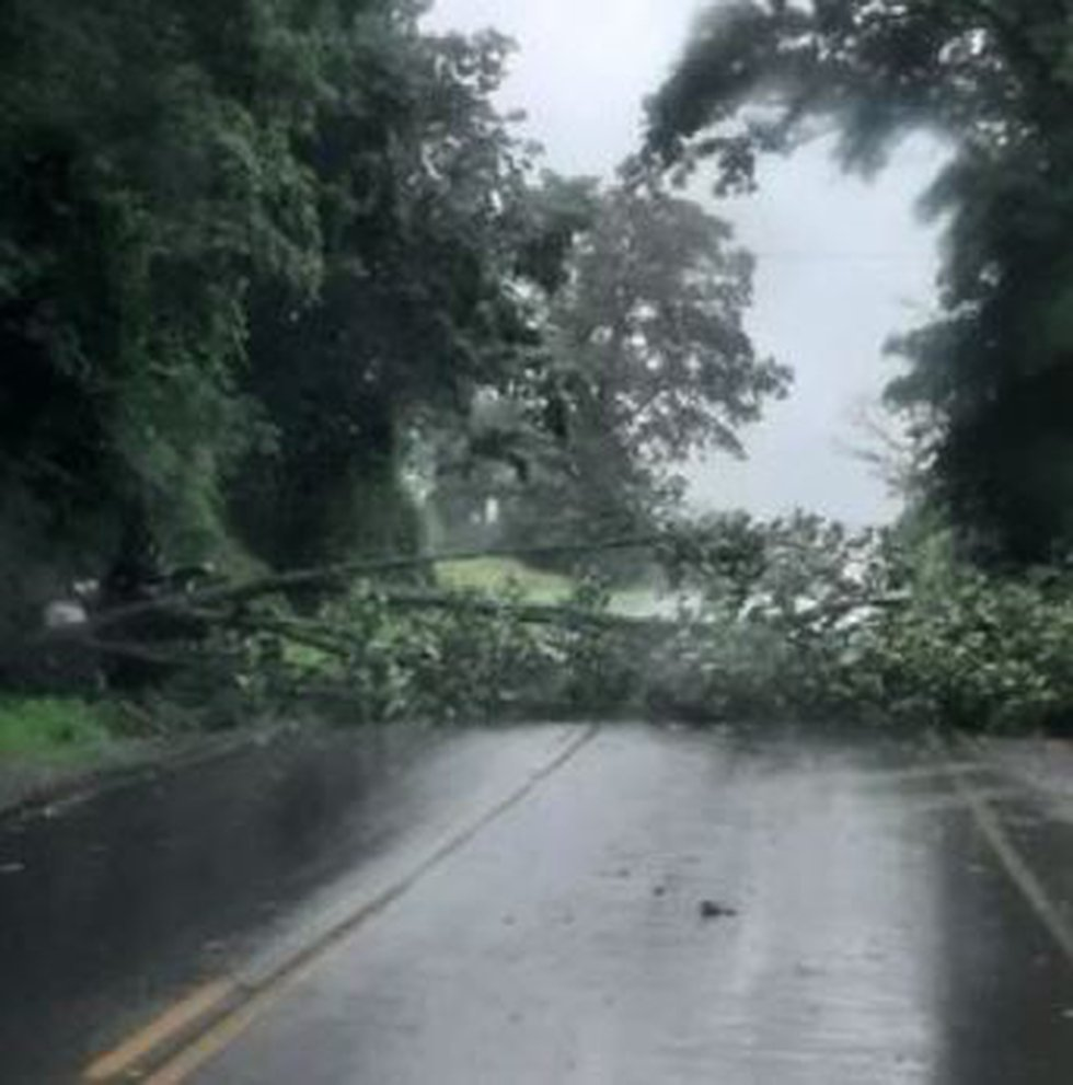Tree down across the road in the Madrid area on County Route 14 between Madrid and Chamberland...