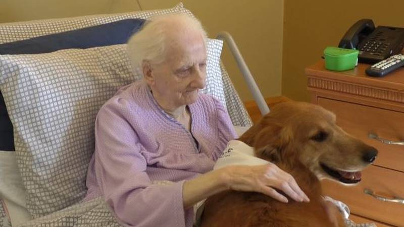 """Hospice of Jefferson County has a """"Pet Peace of Mind"""" program to help patients with the care of..."""