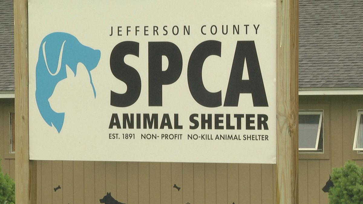 The Jefferson County SPCA has hired Lindsay Hess to be the shelter next General Manager.
