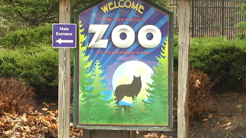 Watertown's Thompson Park Zoo is at a critical point financially and may ask the city to up its...