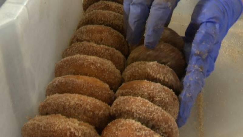 Apple cider doughnuts at Burrville Cider Mill