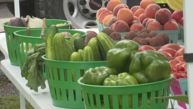 A farmer's market is held in Chaumont every week, to help some residents get access to fresh...